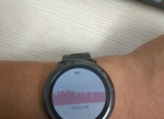 Amazfit Pace to support Voice assistant in next update