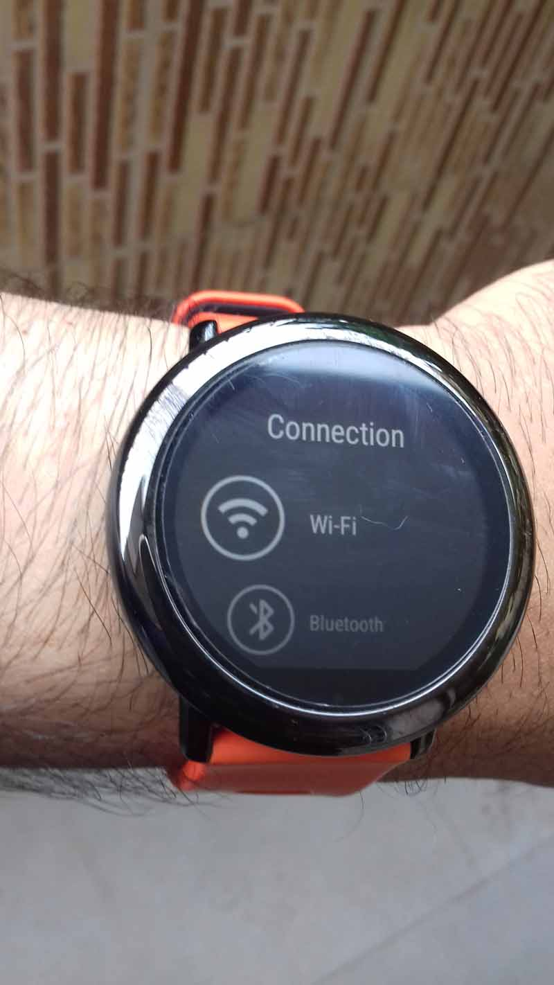 Amazfit PACE Update Version 2.8.0.5